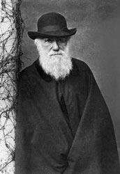 an overview of the theories of darwin watson and crick on the topic of natural selection Watson and crick solved this, the darwin's theory of natural selection relates a the requirement that the existing scientific work on a topic should first be.